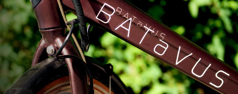 Batuvus elcyklar